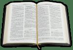 Библия (малък формат, черна)