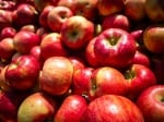 Притча за царя и хубавите ябълки