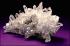 Невероятната сила на Кварцовия кристал